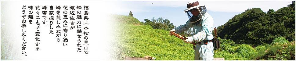 渡辺養蜂場 福島県二本松市の里山からお届けする蜂と養蜂家の日常。 福島県二本松の里山で蜂の魅力に魅せられた渡辺佐吉が花の恵みに寄り添い蜂を慈しみながら自家採りした蜂蜜です。花々によって変化する味の趣をどうぞお楽しみください。希少冷凍生ローヤルゼリー 自家採り国産天然生ローヤルゼリーをそのままの姿で生産販売しております