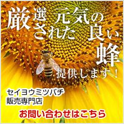 女王蜂 販売 交配用蜂 渡辺養蜂場 セイヨウミツバチ販売専門店