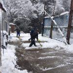 季節外れ大雪です(^^;)
