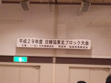 IMG_7153.JPG